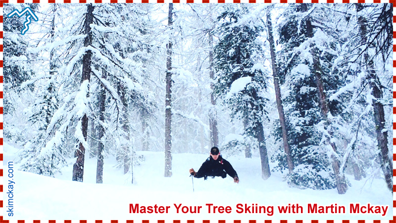 Learn to ski the trees